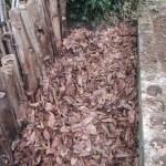 落葉堆肥づくり:1回目の仕込み
