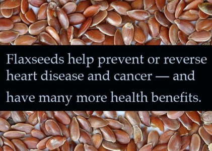 #3 Post of the Year: Human Health Benefits of Genetically Modified Flax Oil