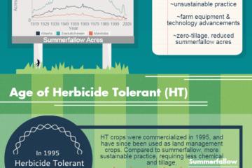 Hebicide tolerance
