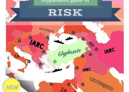 Risk Management vs. Risk Avoidance: