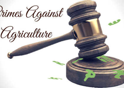 Indicting Greenpeace for Crimes Against Agriculture