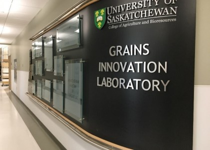 New Crop Varieties: The Journey from Lab to Field – Varietal Testing at the U of S Grains Innovation Lab