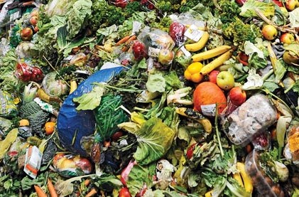 Impact of Global Food Waste on Food Security