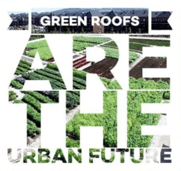 Green roofs are the urban future