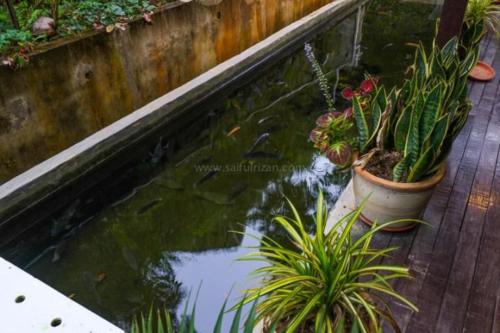 saifulrizan_nikgold-garden-resort-kundasang-8-of-9