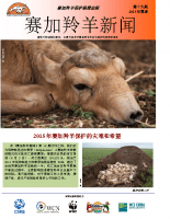 Chinese_Issue_19