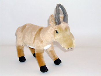 Saigas for sale! Own your very own saiga antelope!