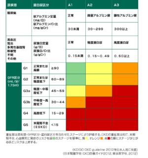 糖尿病治療薬のフォシーガは中等度腎機能低下にも適応拡大・FDAより: 斎賀醫院壁新聞