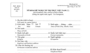 ベトナム_アライバルビザ_申請書_書き方(記入例)_Vietnam_Visa On Arrival_Application Form_Sample1