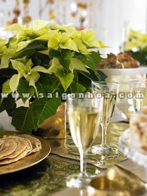 hoa trang nguyen trang tri ban an