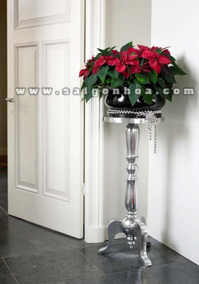 hoa trang nguyen trang tri nha