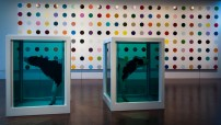 Damien Hirst - 'Coloured Spots and Cows in Formaldehyd'