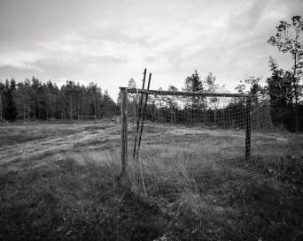 Frillevallen-6953
