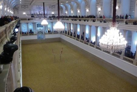 A beautiful arena