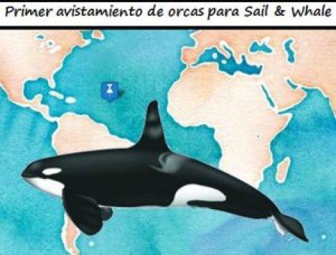 orcas-es