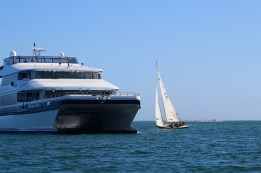 We sail in Long Beach Harbor, one of the busiest commercial and tourist ports in the world.