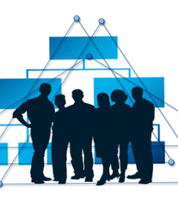 Organizational Structures Going Flat