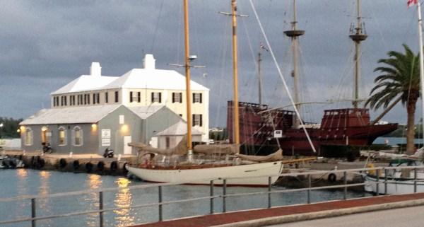 Heron at the dock in Bermuda