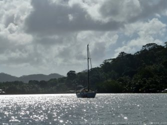 Thor in der Mangrove Bay