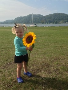A sunflower as big as her head!