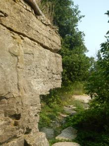 Can you see the rock carving?