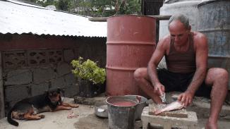 Vladis Schwiergerpapa entschuppt den Fisch