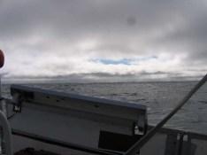 Off the PNW coast
