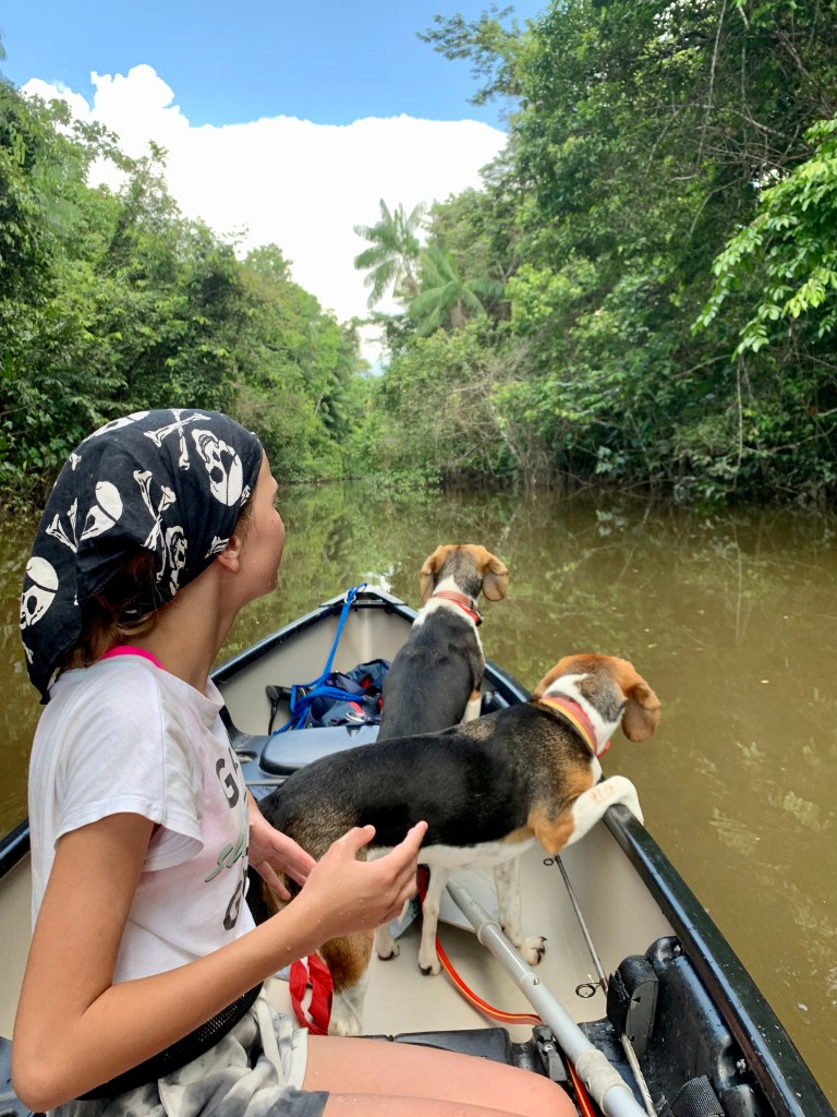 my daughter and the boat dogs in Suriname jungle