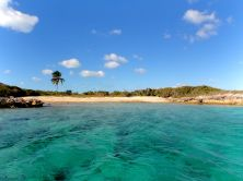 A nice snorkel spot!