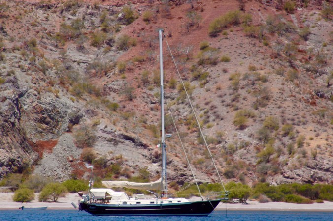 Juniper in Agua Verde, notably at least 450 feet from any other boats.