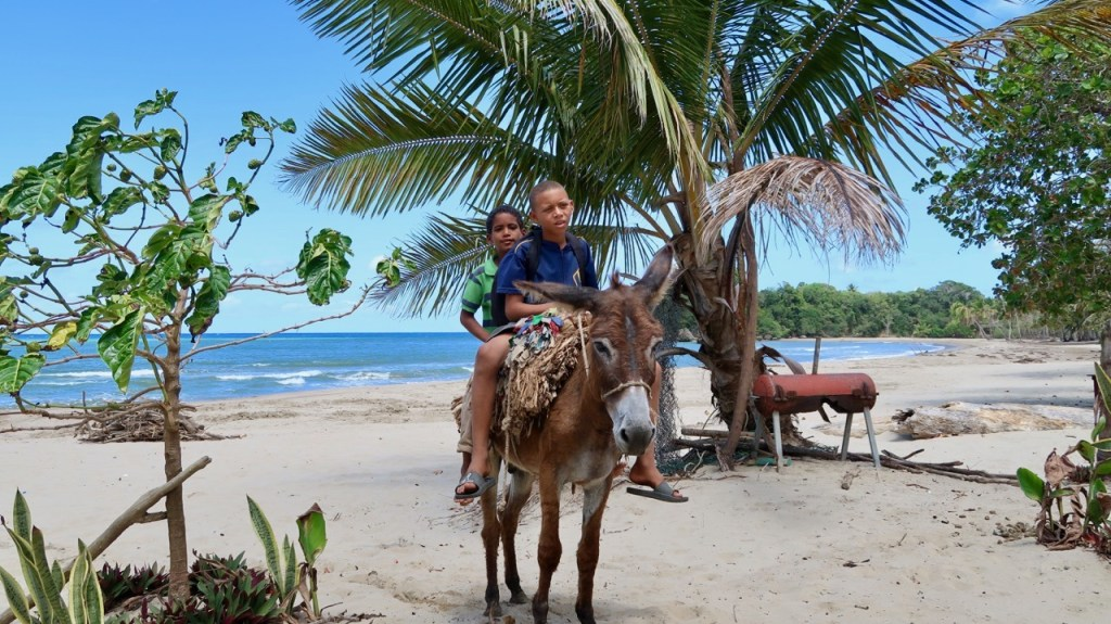 Photo of two boys riding a donkey at the beach