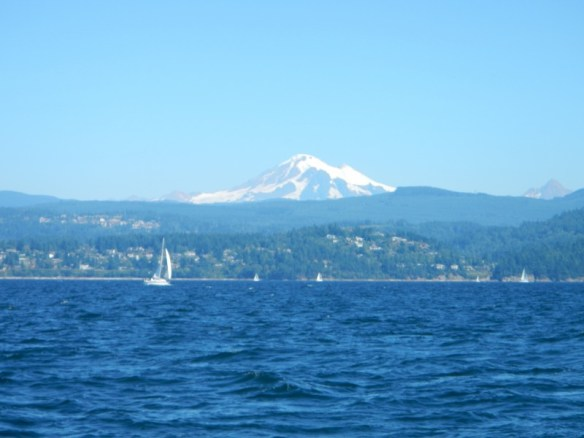 Day sail on Bellingham Bay with Mt Baker in the background.