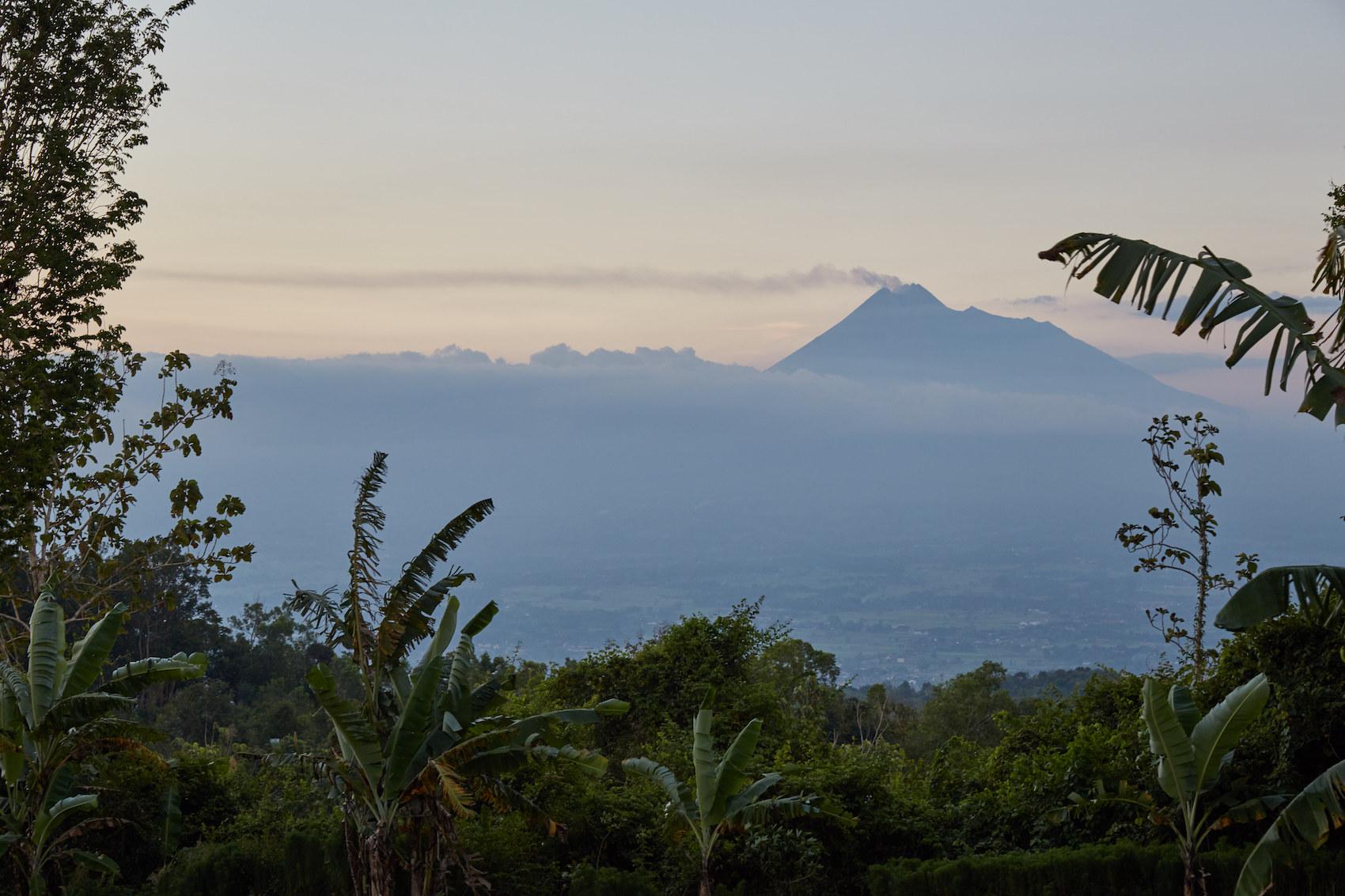 Mt. Merapi, Java, Indonesia