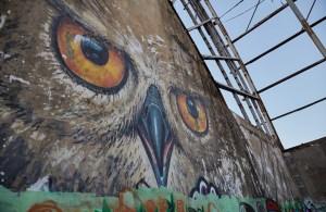 Taman Festival Owl
