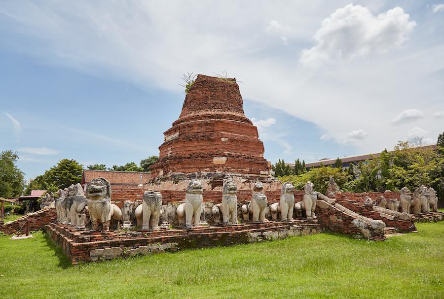 Wat Thammikarat Lions