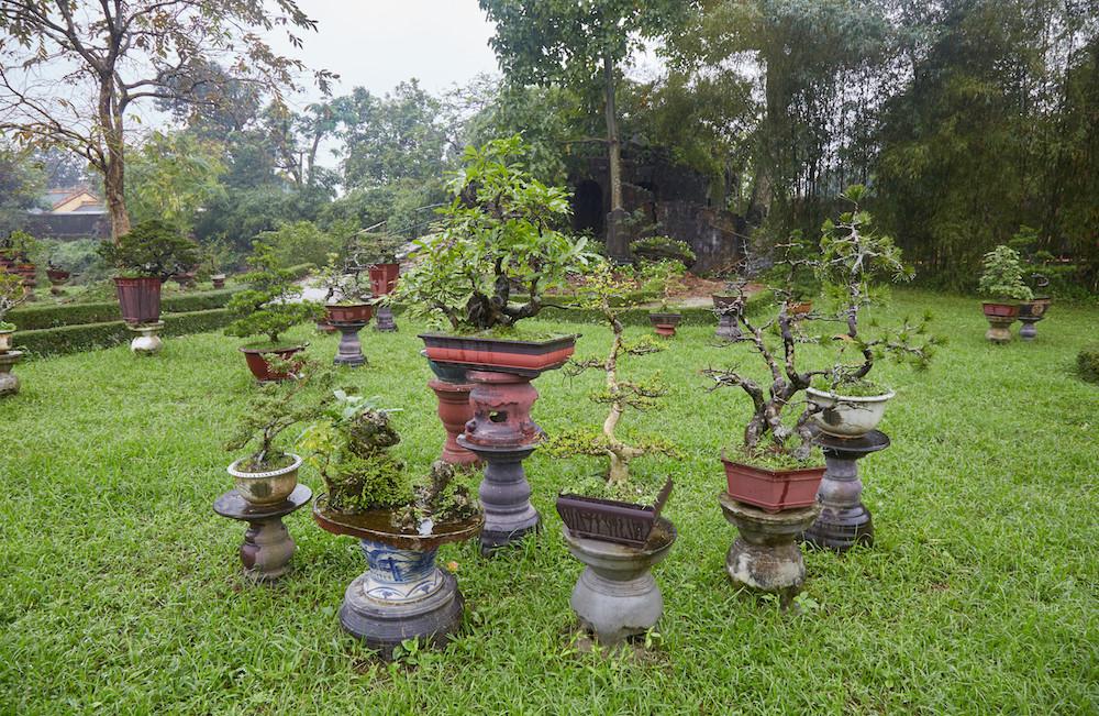 Co Ha Garden Hue