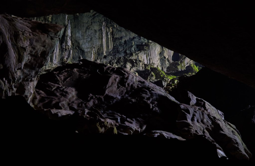 Mulu National Park Deer Cave