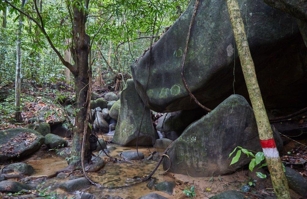 Gunung Gading National Park