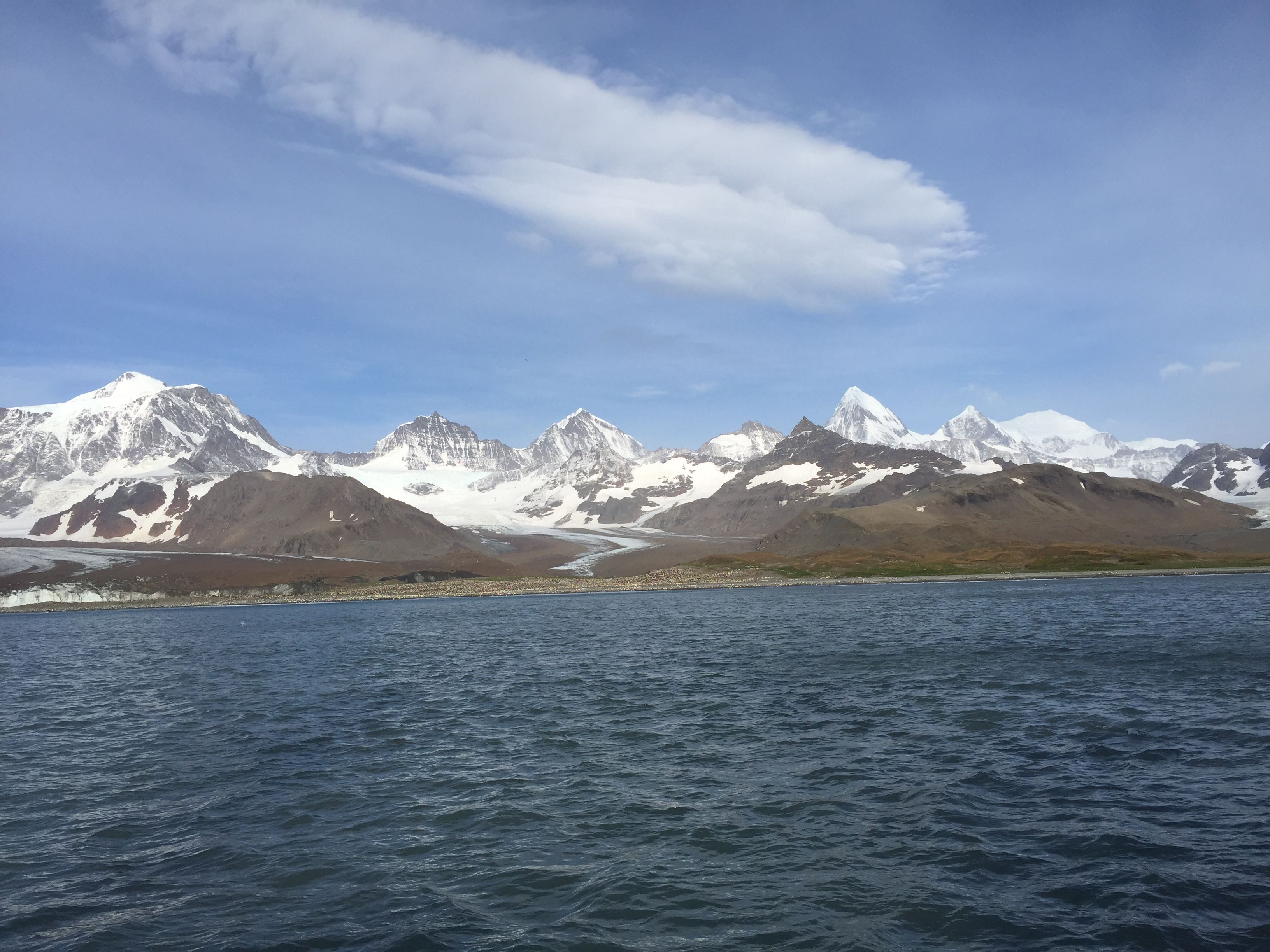The glaciers and peaks surrounding St Andrew's Bay