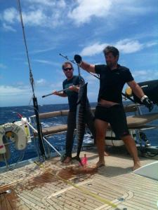 fish at last check out this massive wahoo