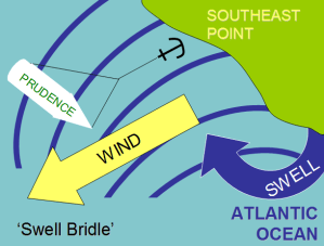 swell_bridle