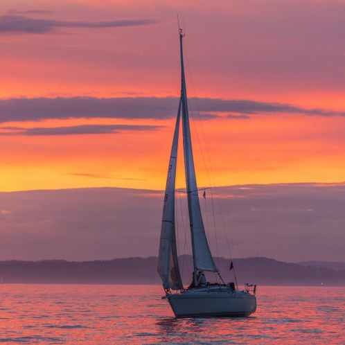 Sunset Sail Sage