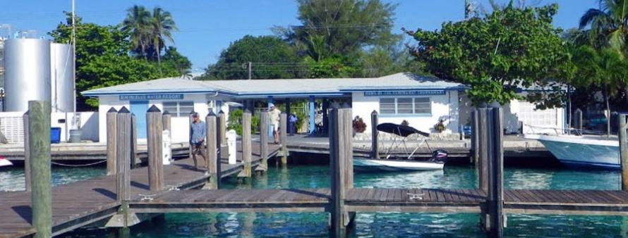 Things To Do In Bimini Bahamas Sailo Boat Rental Bimini