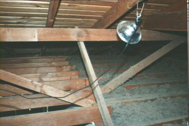 How To Repair A Sagging Ceiling Www Gradschoolfairs Com