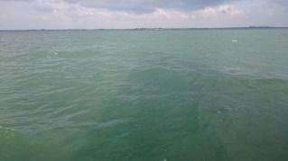 L'ombre de la voile sur l'eau