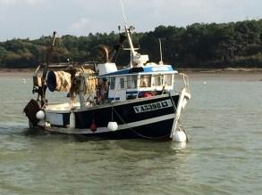 Les bateaux de pêcheur sur la Vilaine