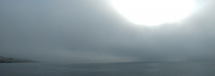 Brouillard brouillard
