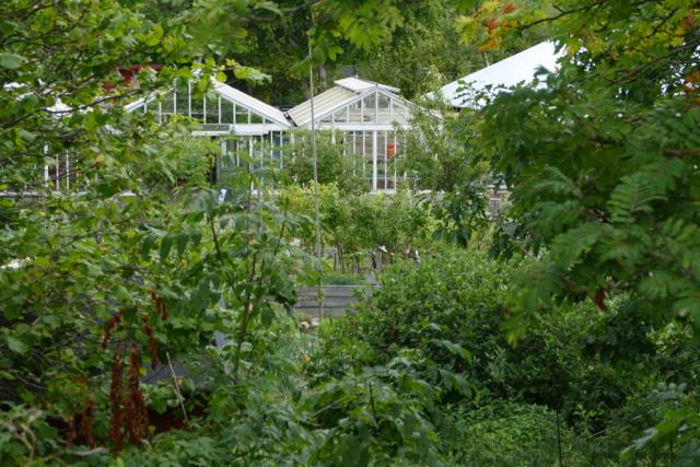 Biodiversity in Kosters Trädgårdar