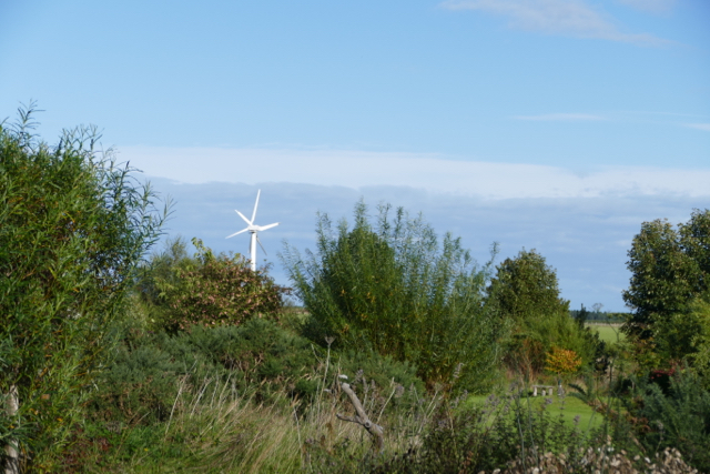 Community wind turbines
