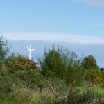 Community wind turbines